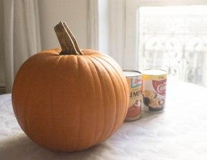 Pumpkin day-13